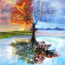 Seasons Tree 5D Diamond Painting DIY